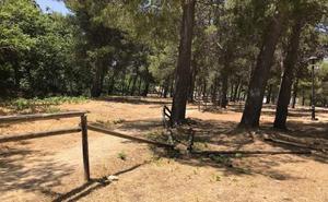 El PSOE de Jaén critica que el PP «abandona a su suerte» al área recreativa de Santa Catalina