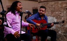 Manuel Fernández 'El Titi' brilla en el segundo de los tres recitales de Plazeando