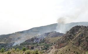 Controlado el incendio forestal en El Pinar