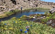 Sierra Nevada programa rutas a las lagunas surgidas de la fusión de la nieve