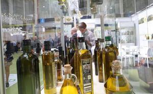 Describen el potencial saludable del aroma del aceite de oliva en la digestión