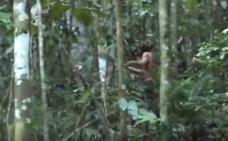Difunden imágenes del «hombre más solitario del mundo»