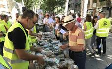 Llenando el carrito a 'precio de costo': Venden productos agrícolas un 1.000% más baratos en pleno centro de Granada