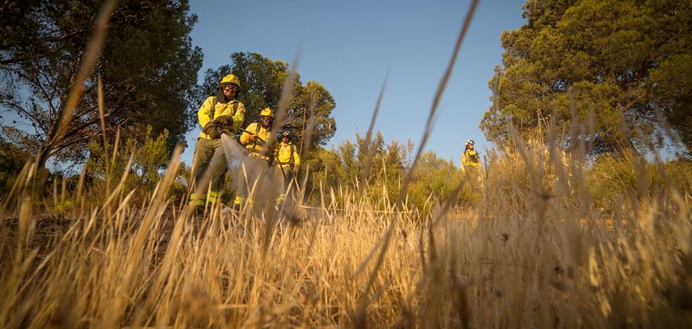 'Buen verano' hasta ahora con solo siete hectáreas afectadas por fuegos forestales