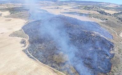Extinguido el incendio forestal en Ventas De Huelma