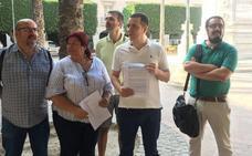 IU presenta alegaciones para mantener el arbolado en la Plaza Vieja
