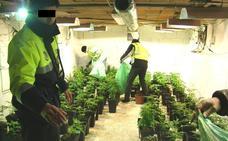 Detenidas cinco personas por tráfico de drogas en Campillo de Arenas