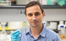 Idean un método para generar plástico biodegradable con residuos de lana