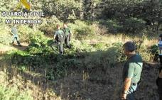 Empieza la 'temporada' de alijos de marihuana alpujarreña con 7.000 plantas