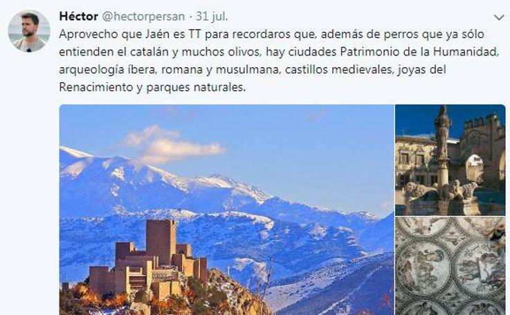 Las redes aprovechan el fenómeno del perro de Jaén para promocionar la provincia
