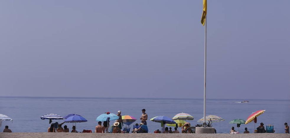 Espectacular día de playa en Almuñécar y Salobreña y banderas amarillas por medusas en Motril, Castell y Carchuna-Calahonda