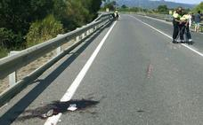 El juez retira el carné y prohíbe la salida del país al detenido por el atropello de dos ciclistas en Tarragona