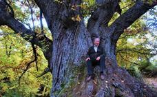 El castaño juega un papel importante en la Alpujarra desde el tiempo de los romanos