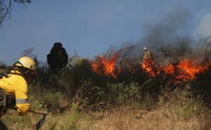 Bomberos e Infoca intervienen en un incendio forestal de una hectárea en Nívar