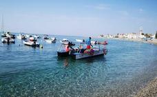Recogen hasta 300 kilos de medusas algunos días de limpieza en las playas de Granada