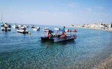 La flota que recoge medusas