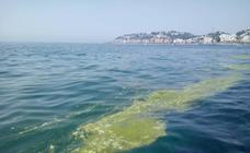El fenómeno «excepcional» que tiñe de verde las playas de Granada