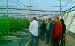 Cajamar reitera su compromiso con el sector agroalimentario