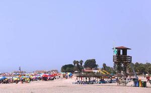 Bandera verde en casi todo el litoral, salvo en dos zonas en las que hay bandera amarilla por medusas