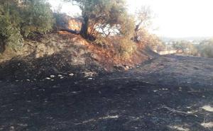Vecinos colaboran en la extinción de un incendio en Alhendín