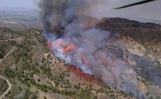 Los ecologistas piden a los almerienses que estén alerta ante el riesgo de incendios forestales