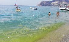 El fenómeno «muy excepcional» que tiñe de verde el agua de las playas de Granada