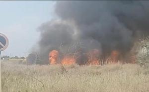 Controlado el incendio en la desembocadura del Andarax