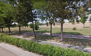 Identifican a una mujer acusada de arrojar comida envenenada en un parque