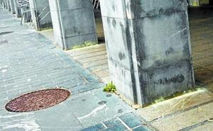 Los terribles efectos del azufre en las calles para los perros que recuerda la Guardia Civil