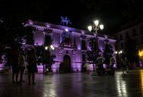 Una noche de guardia en el Ayuntamiento de Granada