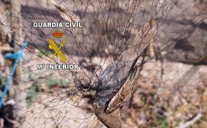 Denunciados por usar redes ilegales para cazar aves