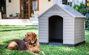 ¿En qué debes fijarte al elegir la caseta de tu perro?