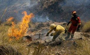 Extinguido el incendio forestal declarado en Marmolejo