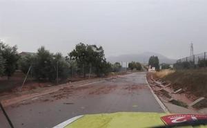 Chirivel pide la declaración de zona catastrófica por la lluvia y el granizo