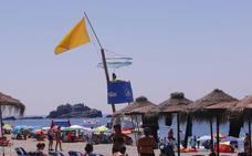 Suerte desigual: la mitad de la playas con bandera verde y la otra mitad con amarilla por medusas