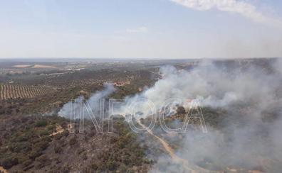 Estabilizado el incendio forestal en el paraje Alto del Rincón de Marmolejo
