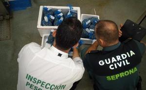 Intervenidos 57 kilos de chirlas inmaduras en una nave del polígono industrial Guadiel de Guarromán