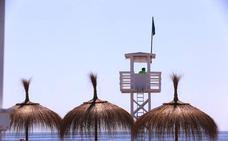 De nuevo las medusas dan una tregua en las playas de la Costa