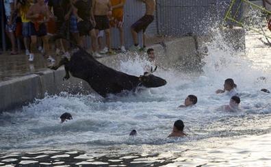 Una vaquilla muere al caer al agua en Benicarló durante los Bous a la Mar