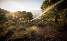 La superficie quemada este verano está un 80% por debajo de la media