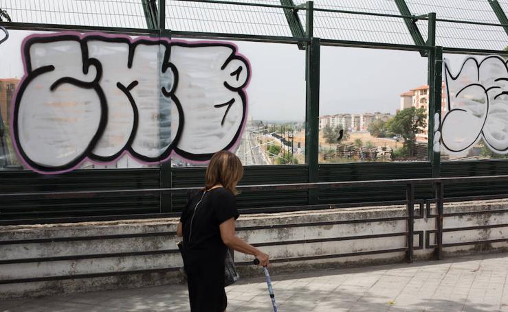 Aparecen pintados con grafitis las mamparas de cristal del puente de Renfe en Camino de Ronda