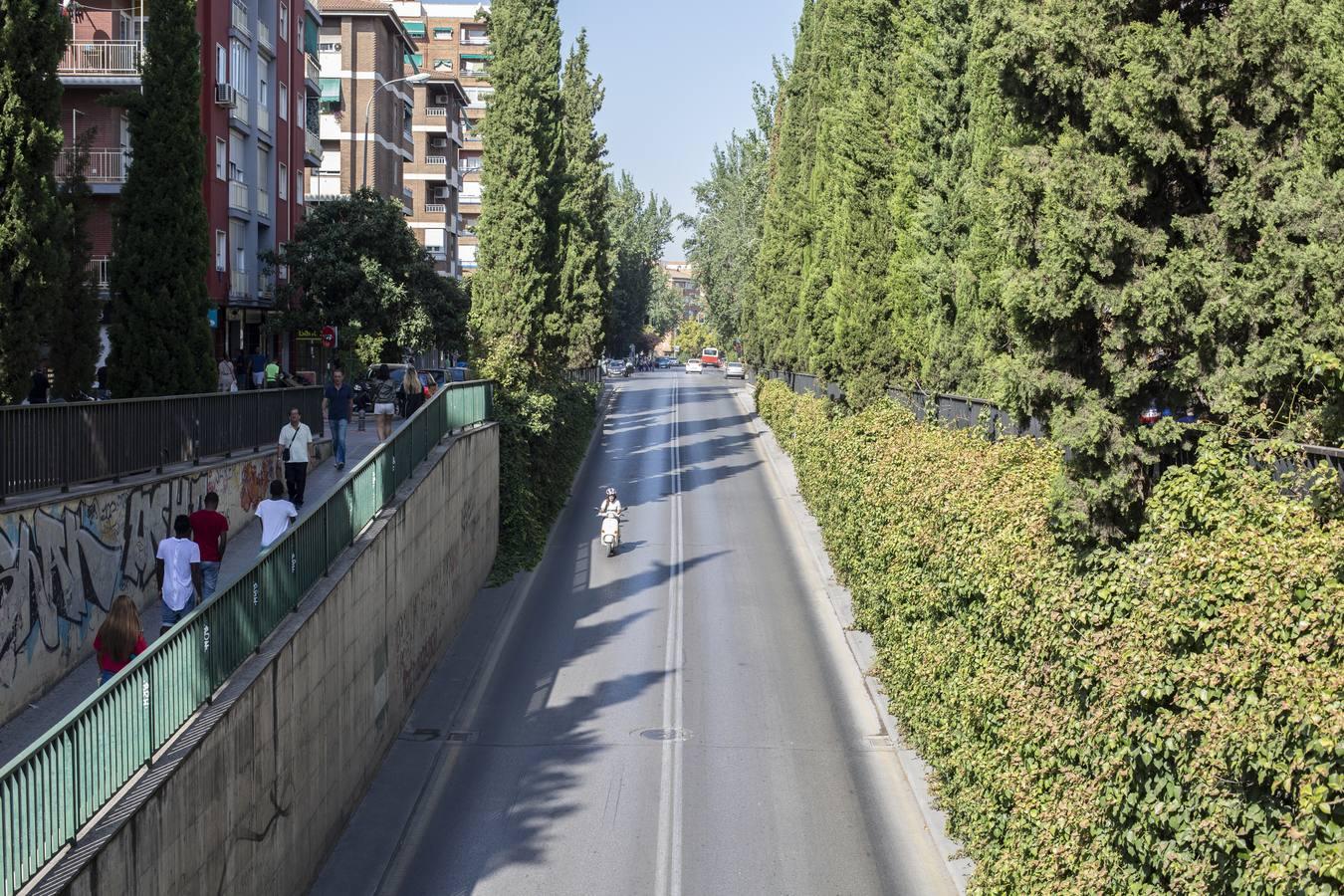 Presentan el proyecto de remodelación de la Carretera de Málaga