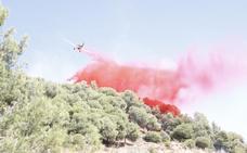 Extinguido el incendio declarado este viernes en el Cerro de San Miguel
