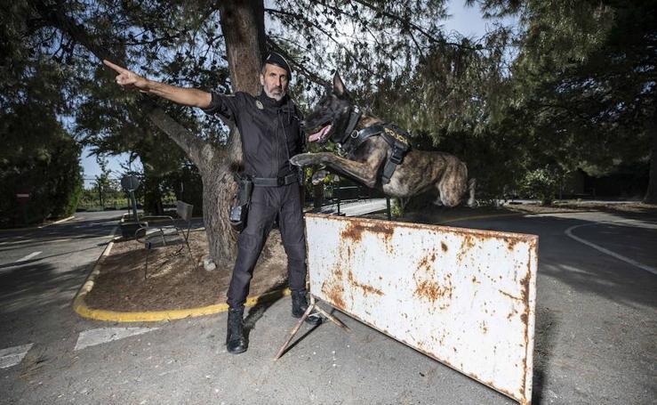 El policía de Granada que le salvó la vida a un conductor