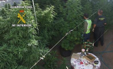 La Guardia Civil interviene 91 kilos de marihuana en Puente Génave y Martos