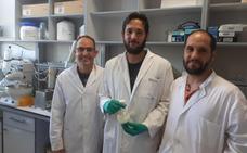Obtienen un fármaco en Granada que consigue resultados positivos para tratar enfermedades neurodegenerativas