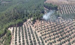 Extinguido el incendio declarado entre las provincias de Granada y Jaén