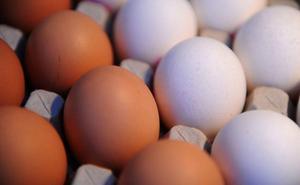 La OCU alerta sobre los alimentos que «engañan en su composición»
