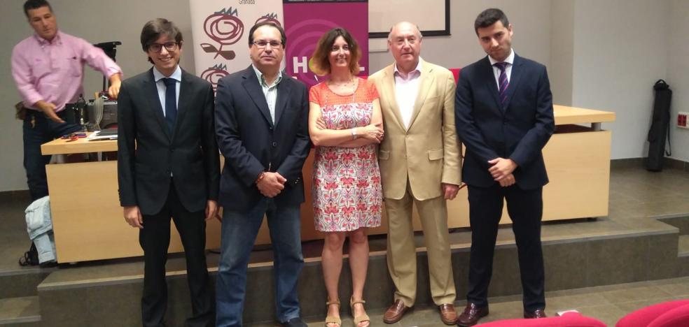 Hoteleros piden un plan para atraer a Granada turistas premium con los nuevos vuelos y el AVE