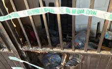 Desmantelan una plantación de cannabis en tres viviendas de Güevéjar